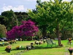 Área nobre no cemitério Parque Iguaçu