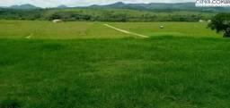 2104/Excelente fazenda de 1.860 ha pronta para pecuária em Almenara MG