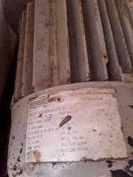 Motor de indução trifasico 1 cv por 300