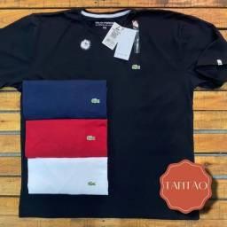Kit com 3 Camisetas Plus Size G1 G2 G3