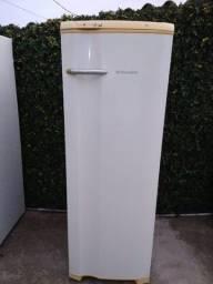 Electrolux 1 Porta Gelo Seco 310L