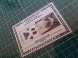 Carteira de Identidade animal! Rg canino/felino!