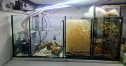Título do anúncio: Filtro sump aquárioe lagos