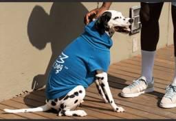 Moletom Flag Zee Dog