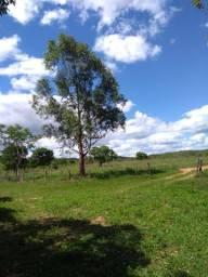 Fazenda Brasilândia de Minas