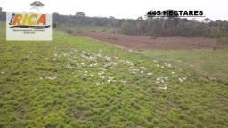Fazenda com 445 Hectares à venda na Zona Rural do município de São Miguel do Guaporé/RO