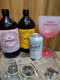 Título do anúncio: Kit gin com especiarias