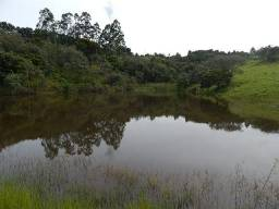 Sítio de 4 alqueires rico em água (Nogueira Imóveis)