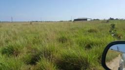 Fazenda de 600 hectares no Amajari A 10 km da cidade. ler descrição do anuncio