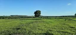 Seja um Pequeno Produtor Rural - Chácaras com 5.000 m² - 27,5 Km do Shopping Ipê