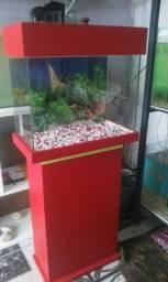 Super promoção aquário completo