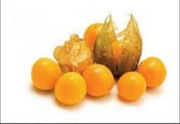 Hortaliça e frutas