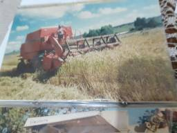 Fazenda buritis.m.g