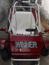 Vendo mini buggy top