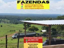 Título do anúncio: Fazenda de 11 alqueires a 38 km de Palmas sentido Paraíso.