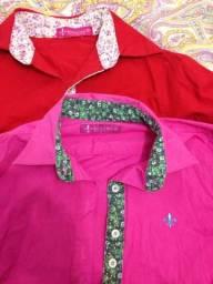 Pra hoje duas blusas social Dudalina