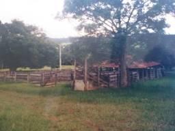 Fazenda de 13 alqueires em Cromínia - Goiás toda cercada pelo Rio Dourado