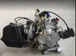 Motor Kart Rotax Max 125 2T