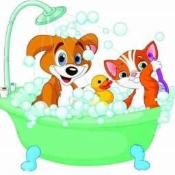 Banho a domicílio
