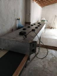 Secadora térmica tipo esteira