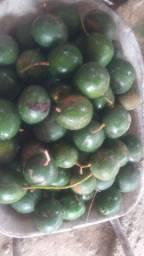 Abacate entrego no bairro