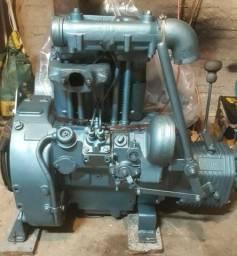 Motor Agrale 24 hp