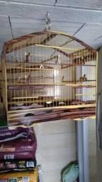 Gaiola  padrão  torneio madeira  violeta  top