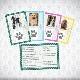 RG Pet - Identidade Animal