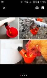 Bebedouro Aves (Sou de Linhares)