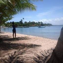 VENDO UM LOTE EM CAMPINHOS PENÍNSULA DE MARAU BAHIA
