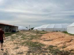 Arrendo ou Vendo Fazenda de Camarão Trairi-CE