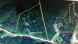 Vendo Área De 232.172 m² Rodovia Dos Minérios Pr 092