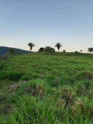 Fazenda De 20 Alqueires com uma reserva de mata  com muita madeira na Vila Paulo fanteles