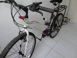 Bicicleta monaco feminina aro 26 com bagageiro
