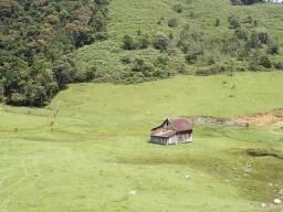 Fazenda em Botuverá com Área de 1.780,184,07m2