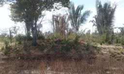 Vendo terreno na estrada do Quebra Pote por 20 mil