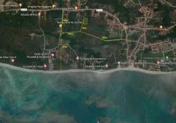 Lotes de 8m x 23,85m em São Miguel dos Milagres (Praia do Toque)