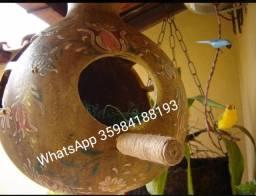 Cabaçinha (ninho para passarinhos)