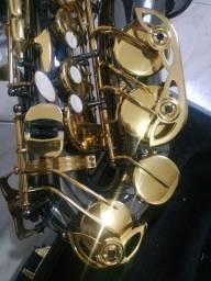 Sax alto hoyden has-50b semi-novo + boquilhas e palheta