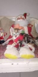 Doação gatinha FÊMEA