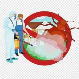 Desinfecção e Desinfestação