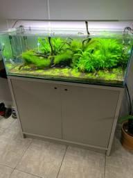 Aquário plantado top 180 litros co2