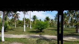 Rancho tropical com área de 05ha