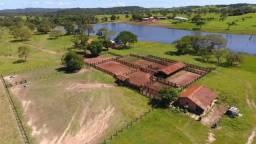 Fazenda 658 Alqueires, Sandolandia-TO