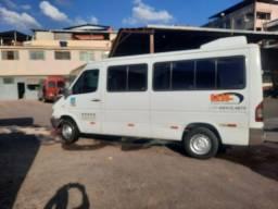 Van Sprinter 313