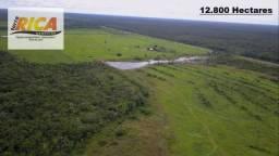Título do anúncio: Fazenda com 12.800 Hectares a venda na Área Rural de Porto Velho/RO