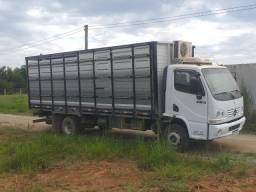 Caminhão boiadeiro único dono *