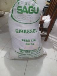 Sacos para grãos