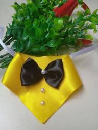 Laços e gravatas pet ???