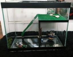 Aquaterrario / Aquário